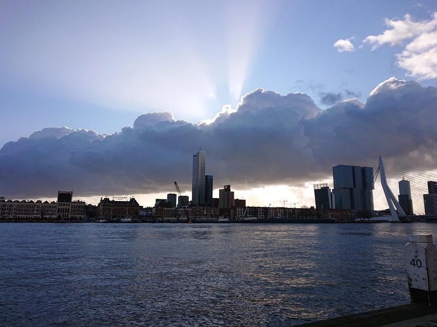 Rotterdam9