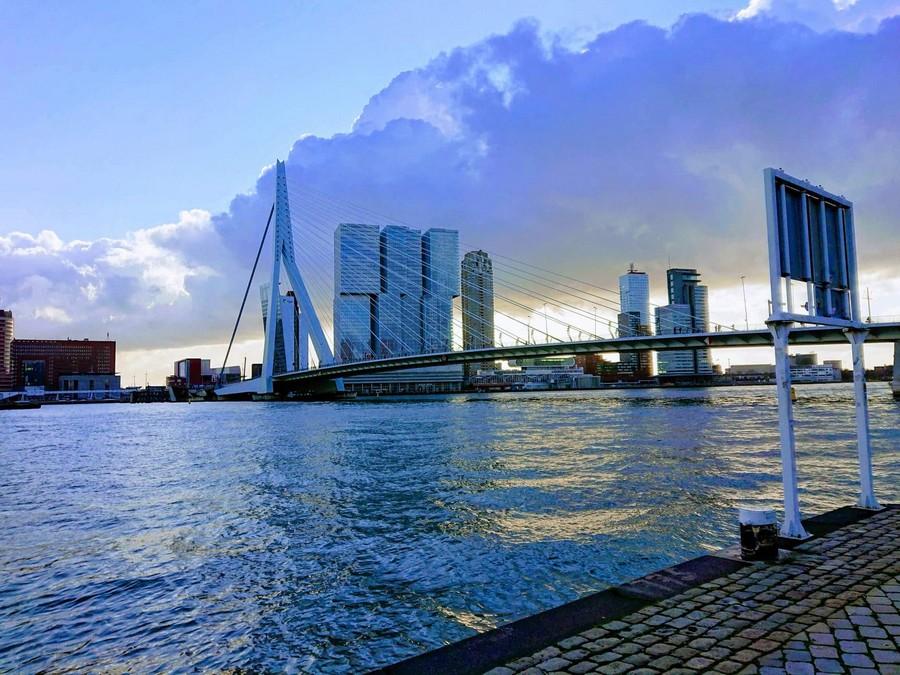 Rotterdam8